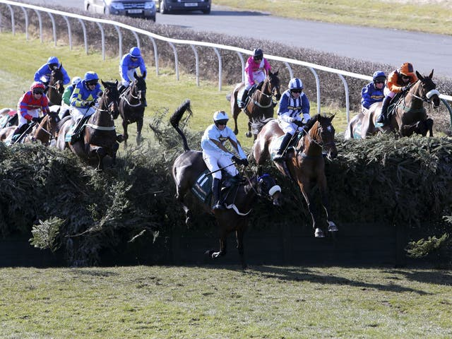 14 horses have died at Becher's Brook (pictured) but 27 horses have died at Taxis Ditch in the Velka Pardubicka in the Czech Republic