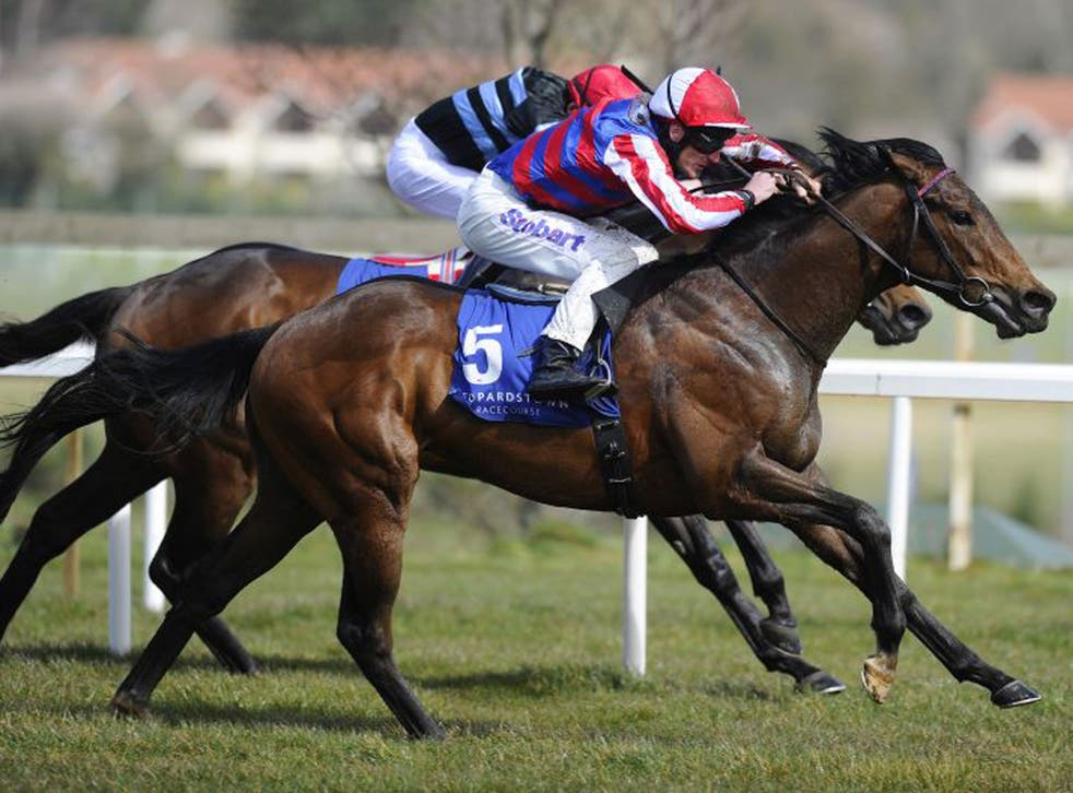 Fort Knox is 20-1 for the 2,000 Guineas after winning at Leopardstown