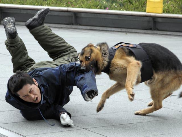 <p>El ataque despertó la molestia por el uso excesivo de la fuerza de los policías en Inglaterra</p>