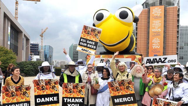 Beekeepers rejoice outside the EU headquarters after the vote