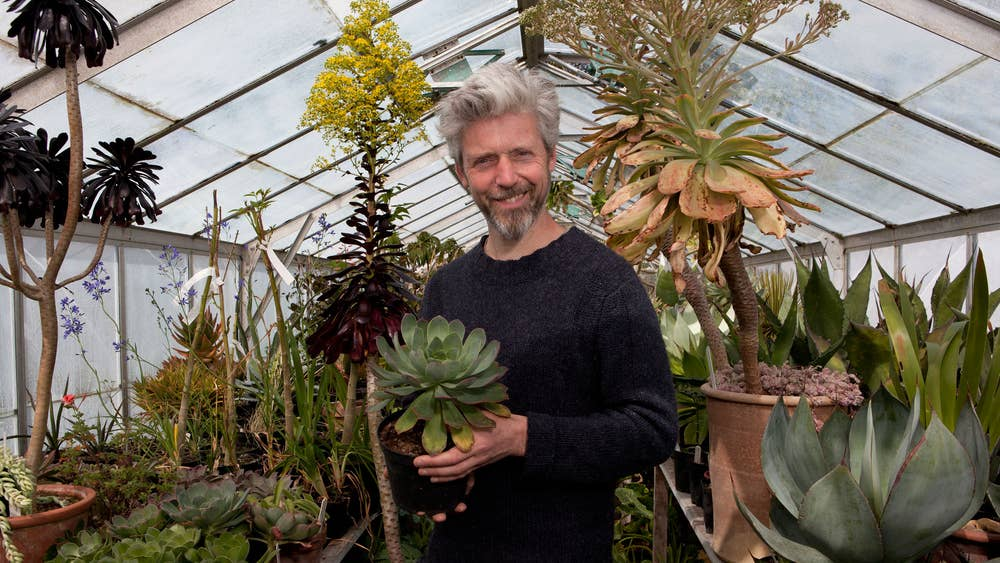 A Very Rare Breed Plantsman Nick Macer Fills His Eclectic Nursery