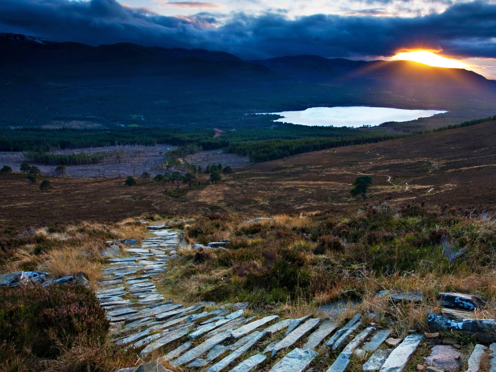 The Magnificent Wilderness Of The Cairngorms The Independent