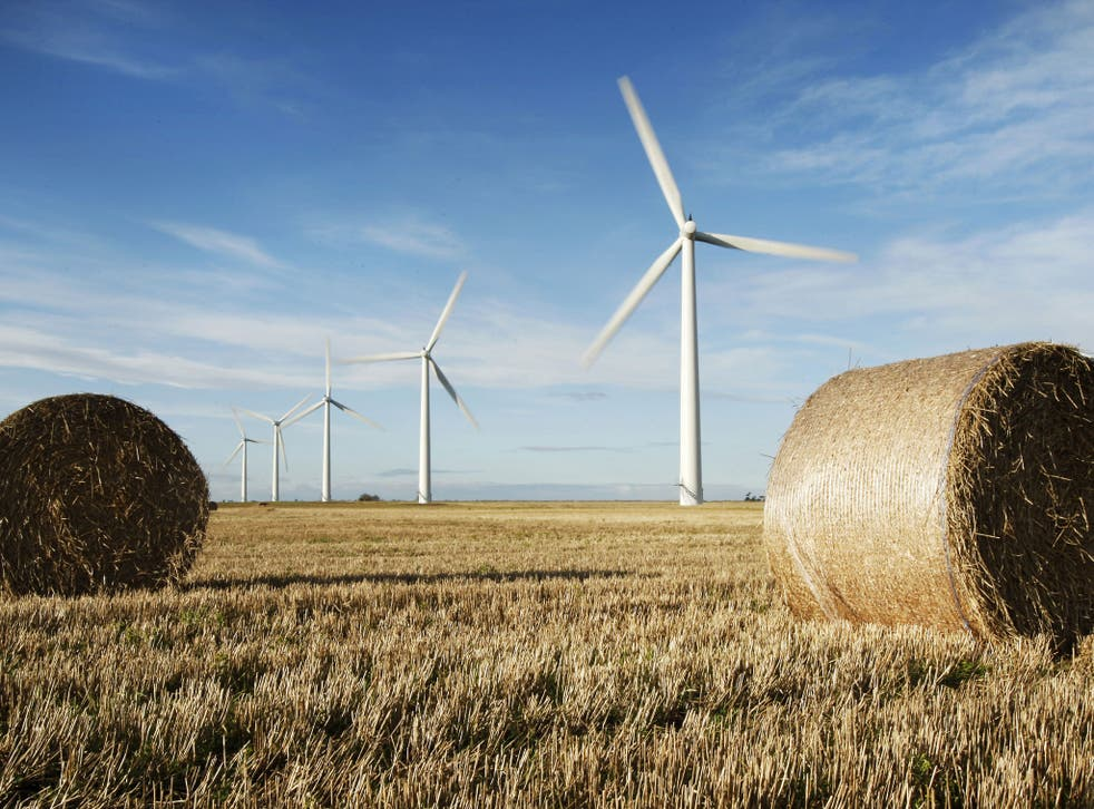 Bumper harvest: Westmill Wind Farm Co-operative produces enough green electricity to power more than 2,500 homes, cutting carbon dioxide emissions