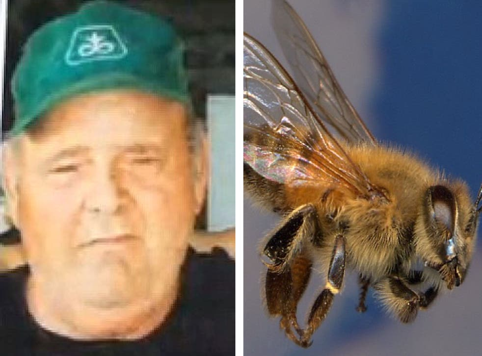 Larry Goodwin had been using a tractor to help a friend build a brush pile on Saturday afternoon when he disturbed a large Africanized honey bee hive concealed in a chicken coop.