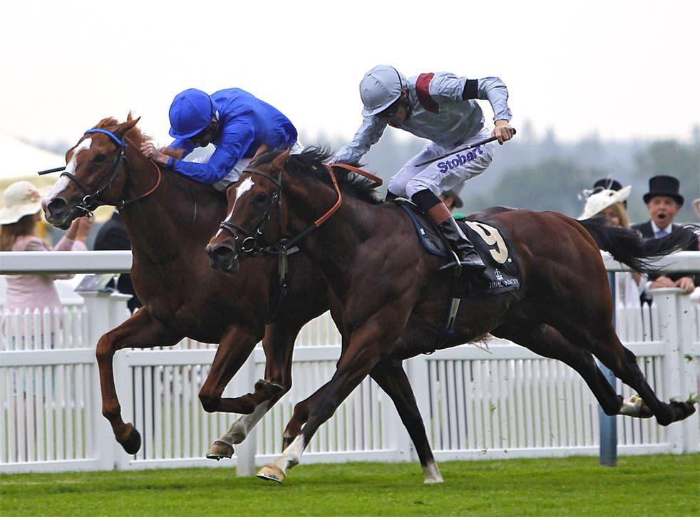 Dawn Approach (blue) digs deep to repel Toronado in the St James's Palace Stakes at Ascot yesterday