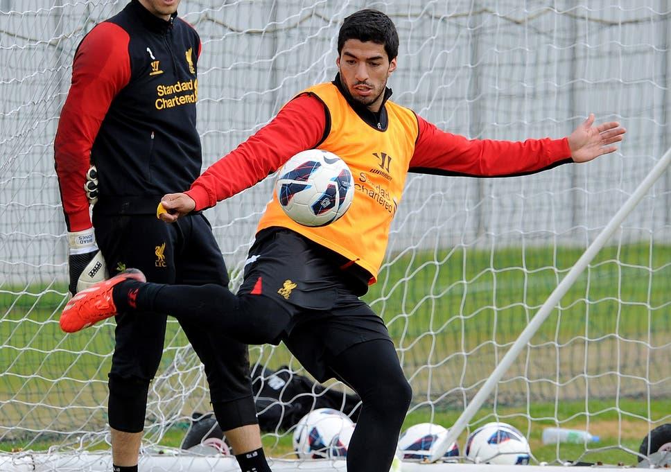 Liverpool goalkeeper Brad Jones insists Luis Suarez has not