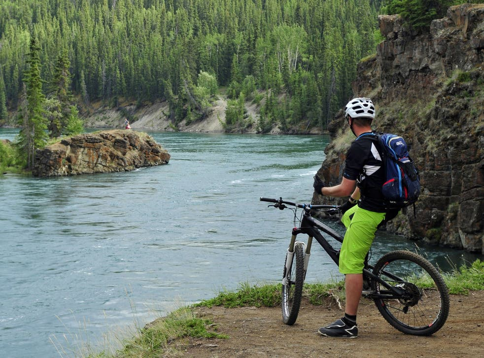 Boreal forest paths present a rugged challenge
