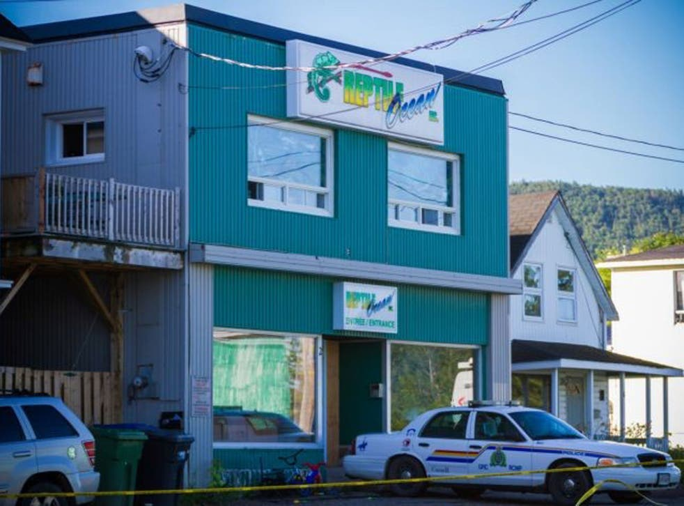 A Royal Canadian Mounted Police cruiser sits outside the Reptile Ocean exotic pet store in Campbellton, New Brunswick