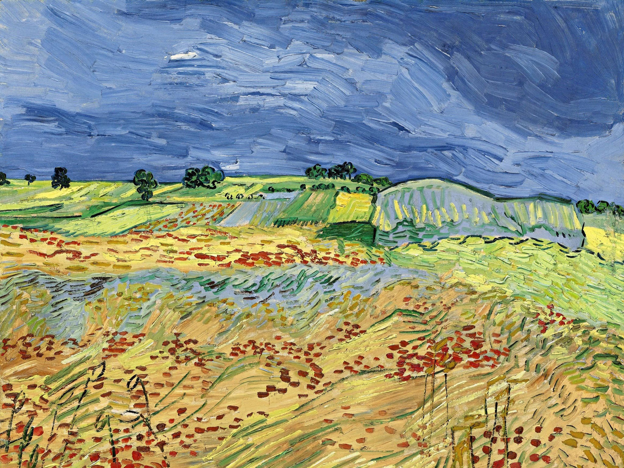 Did Vincent van Gogh commit suicide or was Dutch painter killed by an acquaintance?