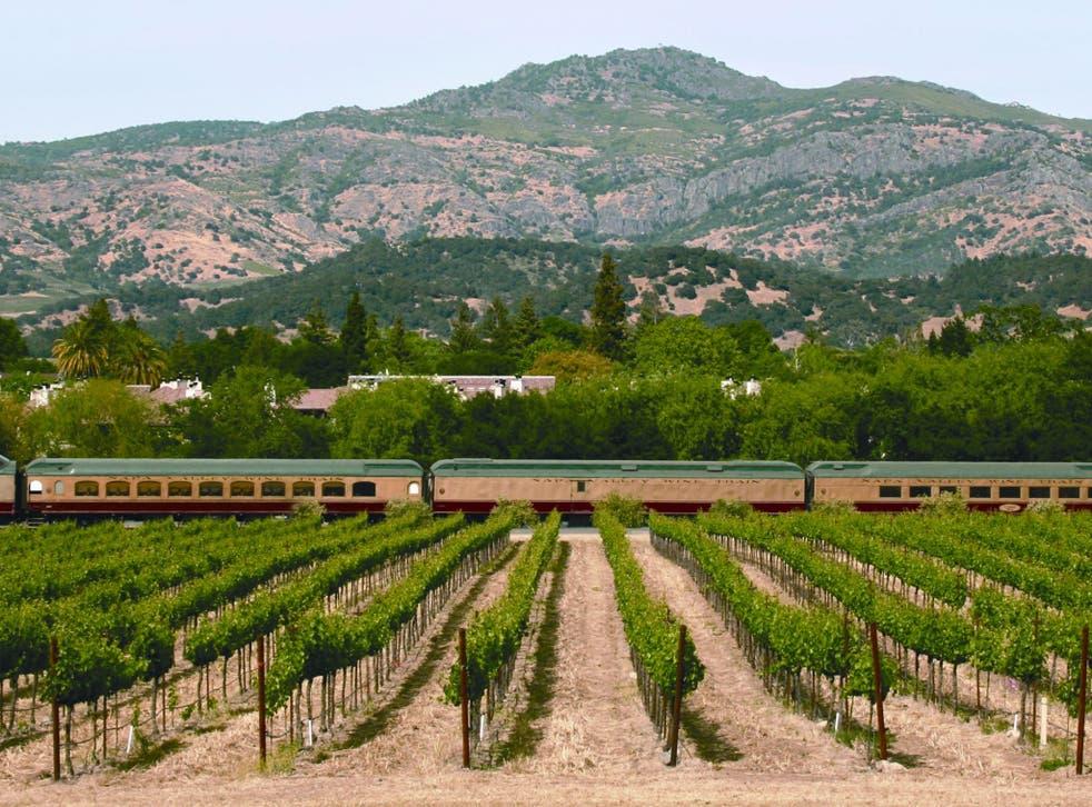 Vine time: a train passes through a Napa Valley vineyard
