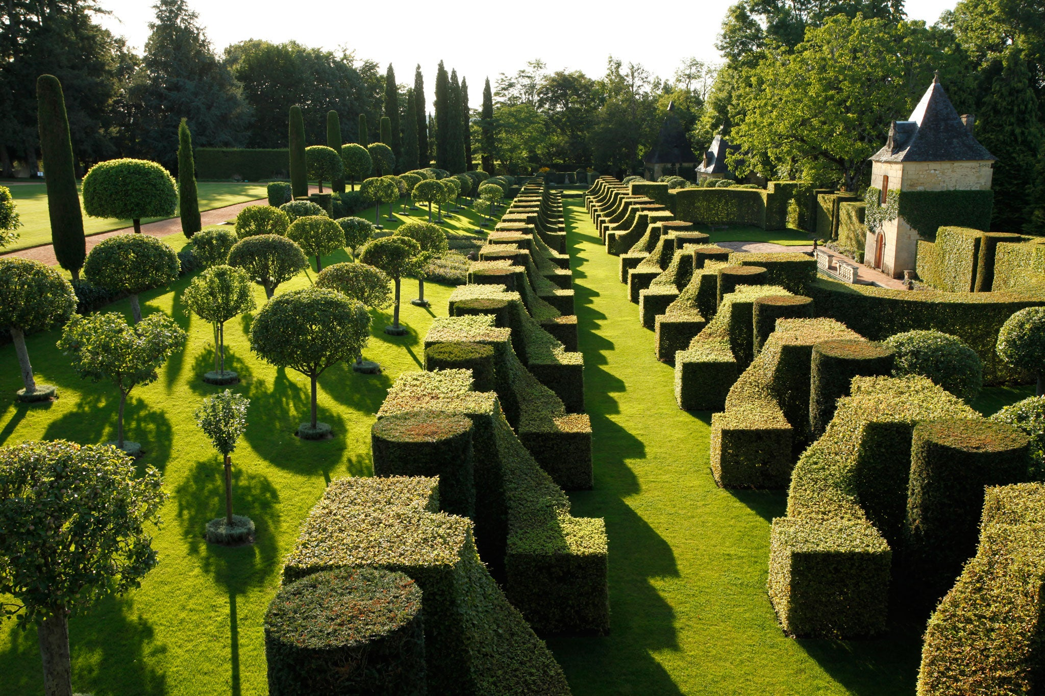 Hedging their bets Anna Pavord visits an immaculate garden in