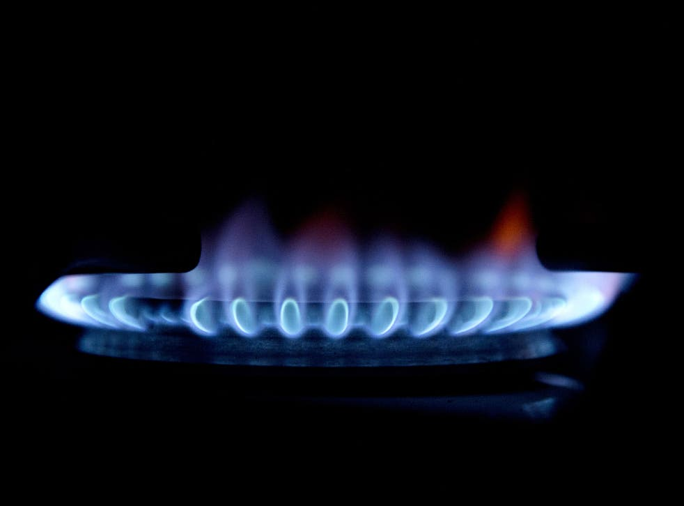 Ed Miliband has pledged that an incoming Labour government would freeze gas and electricity prices for 20 months