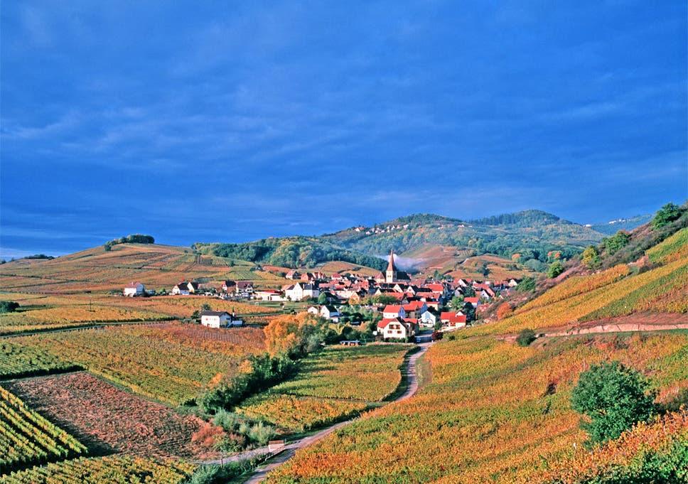 landscape of french farming set to change as president françois