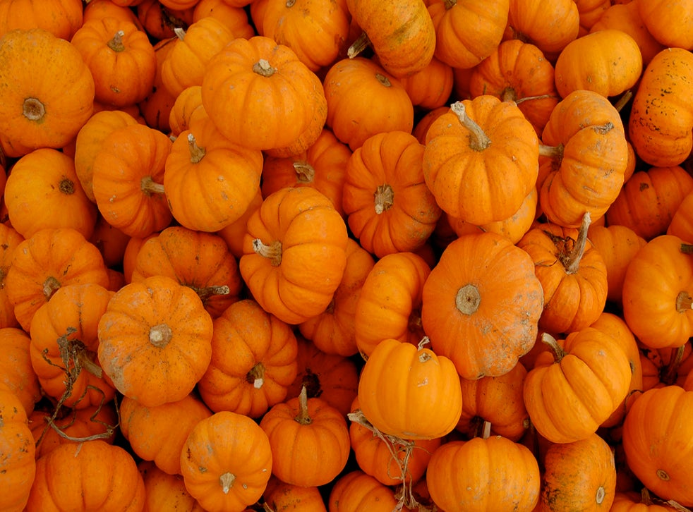 Save Our Pumpkins Uk Wastes 18 000 Tons Of Food While Carving Halloween Jack O Lanterns The Independent The Independent