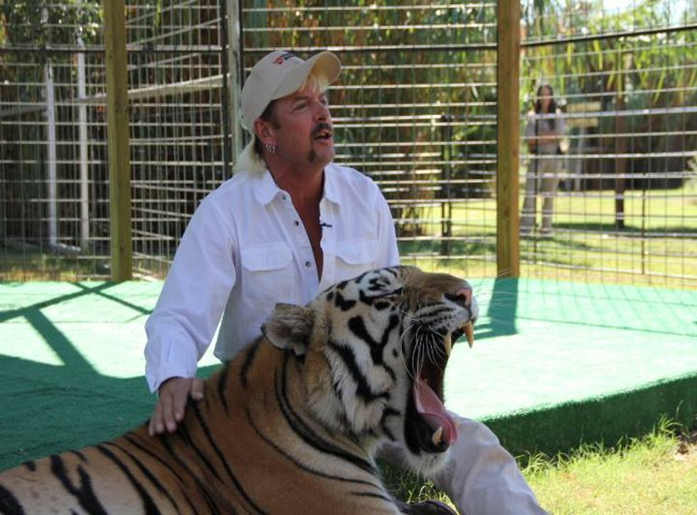 The owner of the GW Interactive Zoological Park in Oklahoma, Joe Schreibvogel (pictured) said his employee 'violated protocol' when she stuck her hand in a tiger enclosure and got attacked