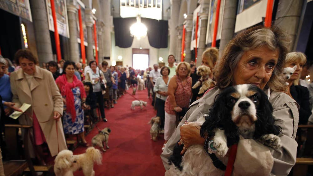 Owners bring pets to church to receive blessings for Saint
