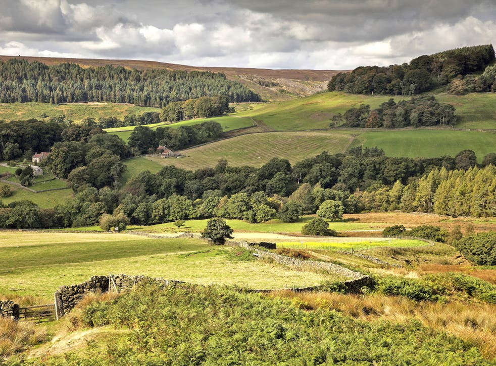 The Campaign for National Parks said the developments are in 'danger of destroying the integrity' of the North York Moors