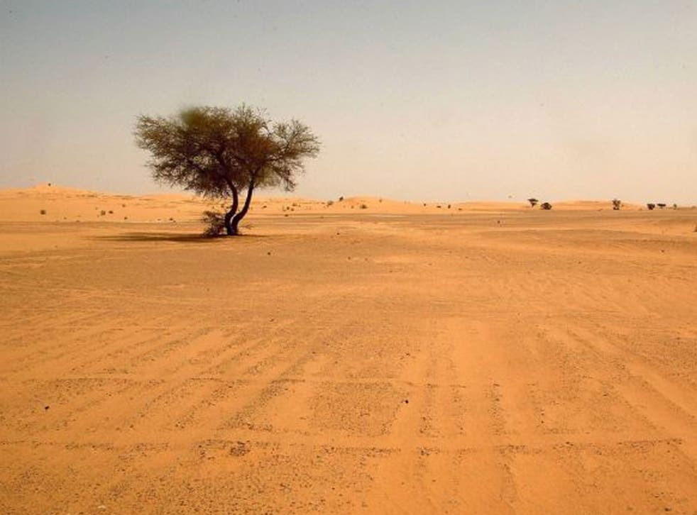The Sahara Desert covers 10 per cent of the African continent