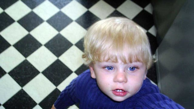 Failures: Haringey Council was at the centre of the deaths of Baby Peter