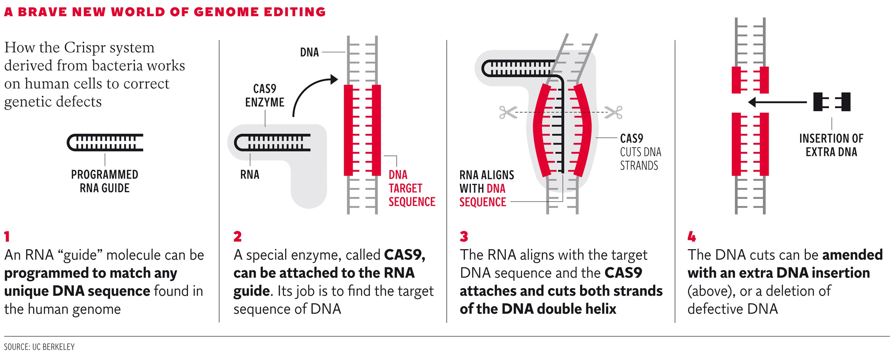 Exclusive: 'Jaw-dropping' breakthrough hailed as landmark in fight against hereditary diseases as Crispr technique heralds genetic revolution
