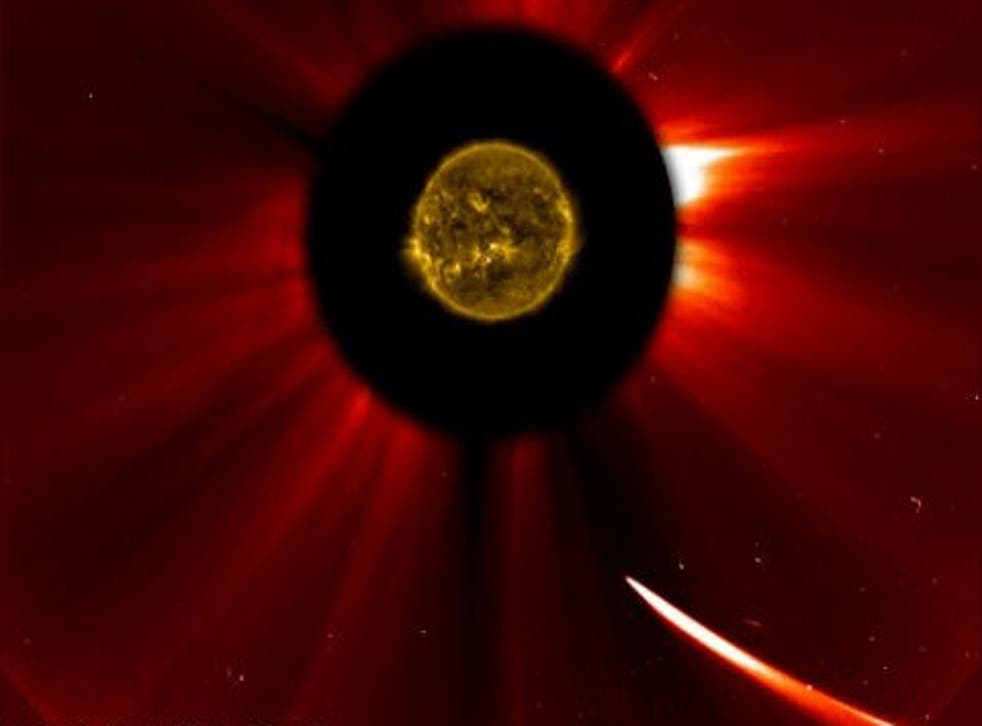 In this composition image from Nasa, Comet Ison (bottom right) moves towards the sun