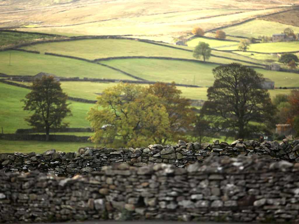 Human brain hard-wired for rural tranquillity