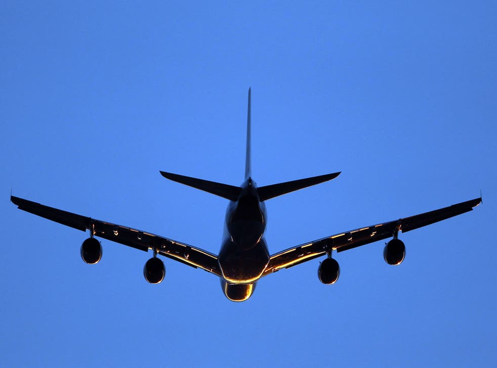 Heathrow needs a third runway and possibly a fourth, Labour MP Louise Ellman has said