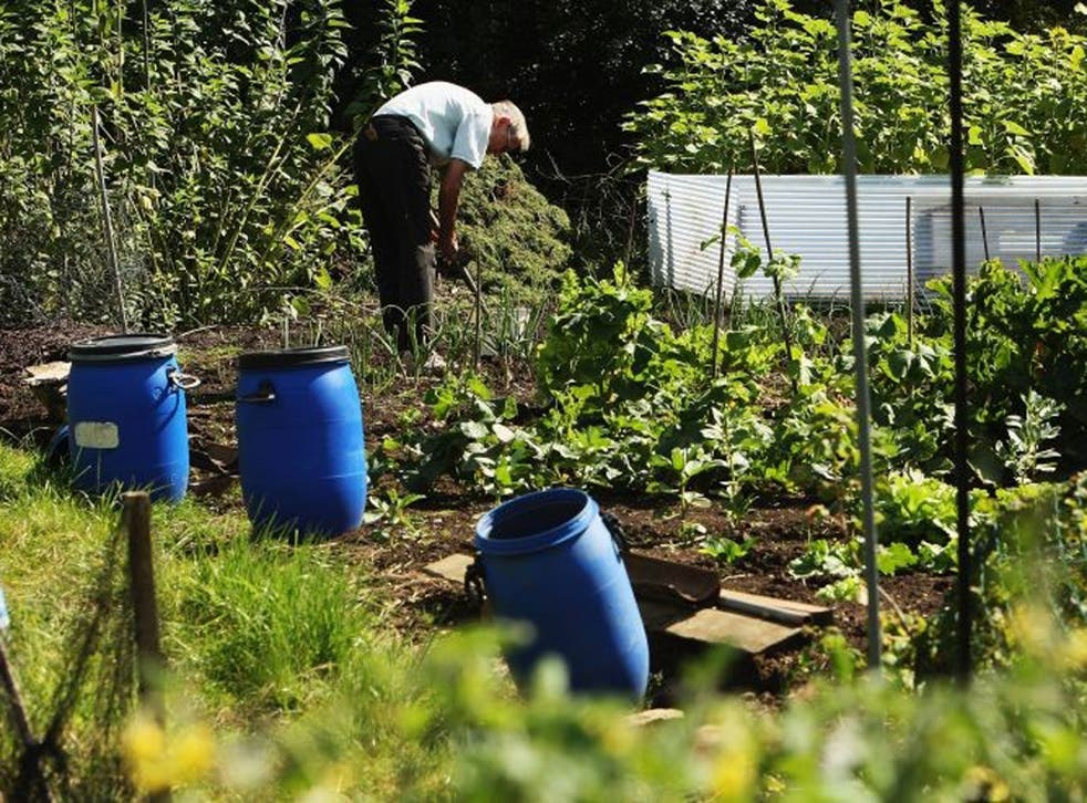 Councils must provide plots for local residents where there is demand
