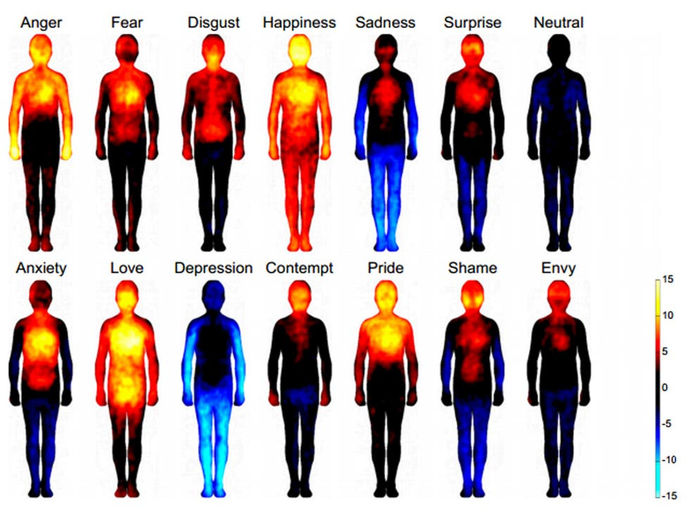 The 'body atlas' shows where people feel certain emotions, regardless of their backgrounds, according to a new study