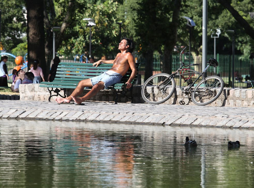 A man sits under the sun at the Centenario park in Buenos Aires, Argentina.