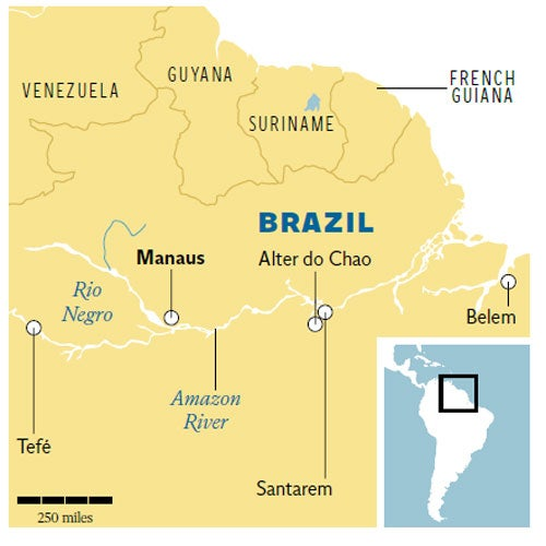 Traveller's Guide: Brazilian Amazon   The Independent