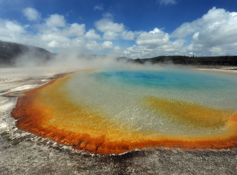 Hot springs in Yellowstone National Park, which is centered over the supervolcano