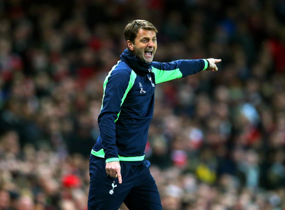 Tottenham manager Tim Sherwood gestures from the sidelines during his side's 2-0 defeat to Arsenal in the FA Cup third round