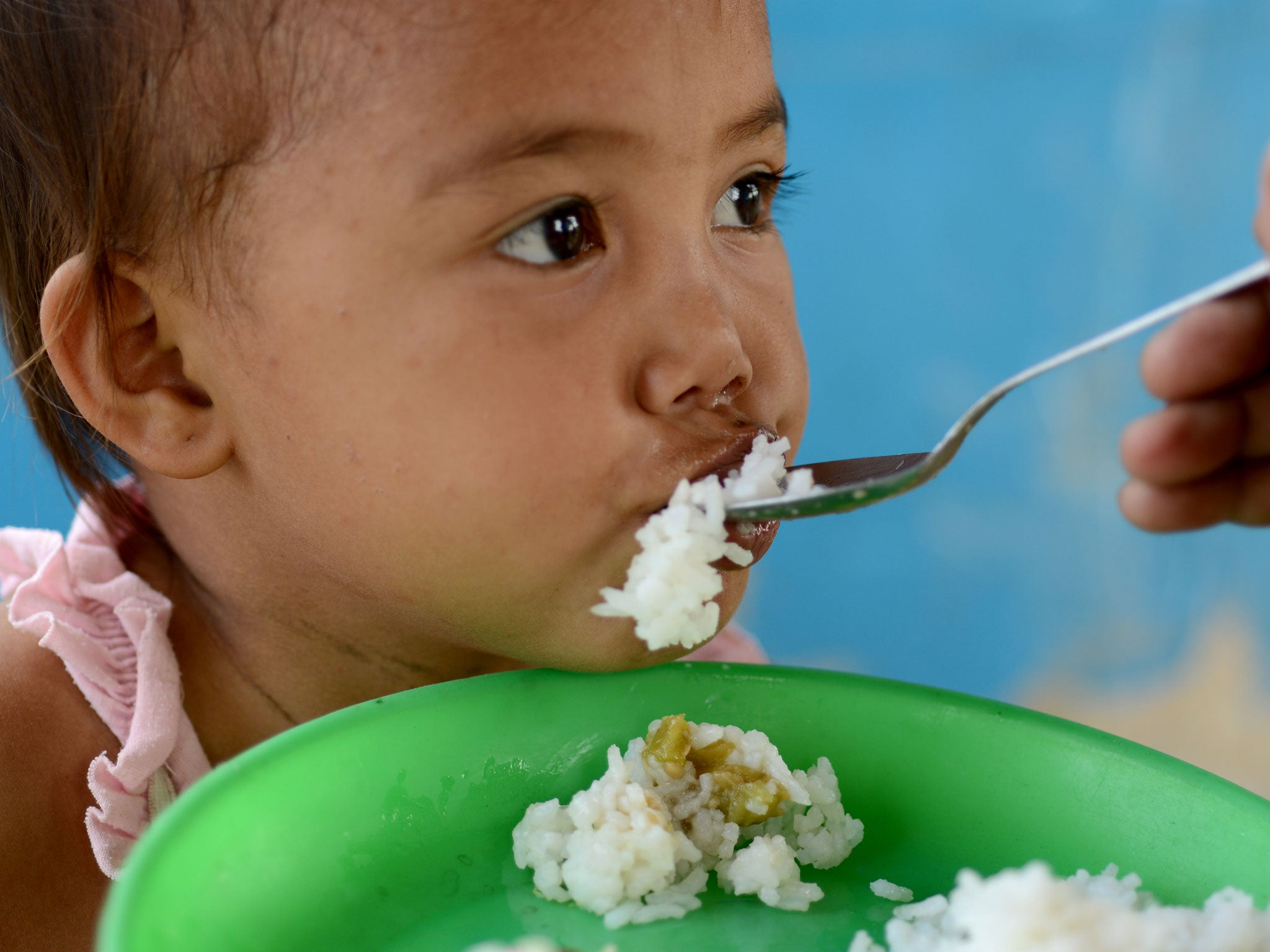 The habit of overeating is laid in infancy