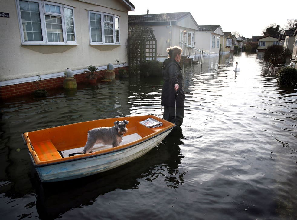 A woman pulls her dog in a boat at the Abbey Fields caravan park after the River Thames flooded on 8 January 8.