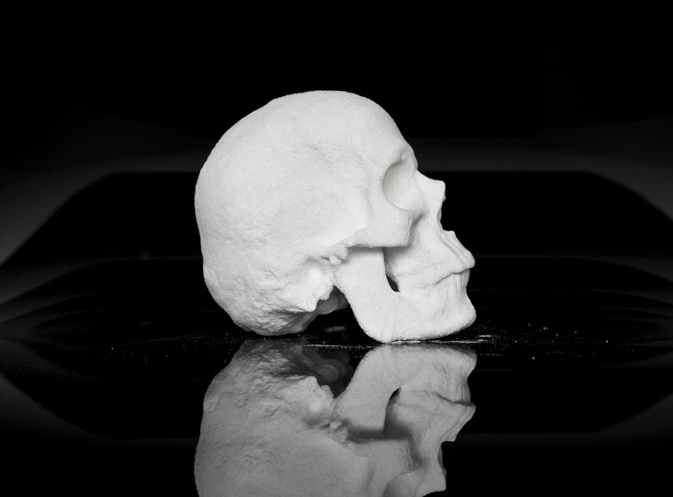 A side view of 'Ecce Animal', a skull moulded out of cocaine by Dutch artist Diddo
