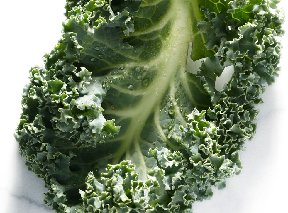 A kale leaf; the green vegetable is enjoying a newfound popularity