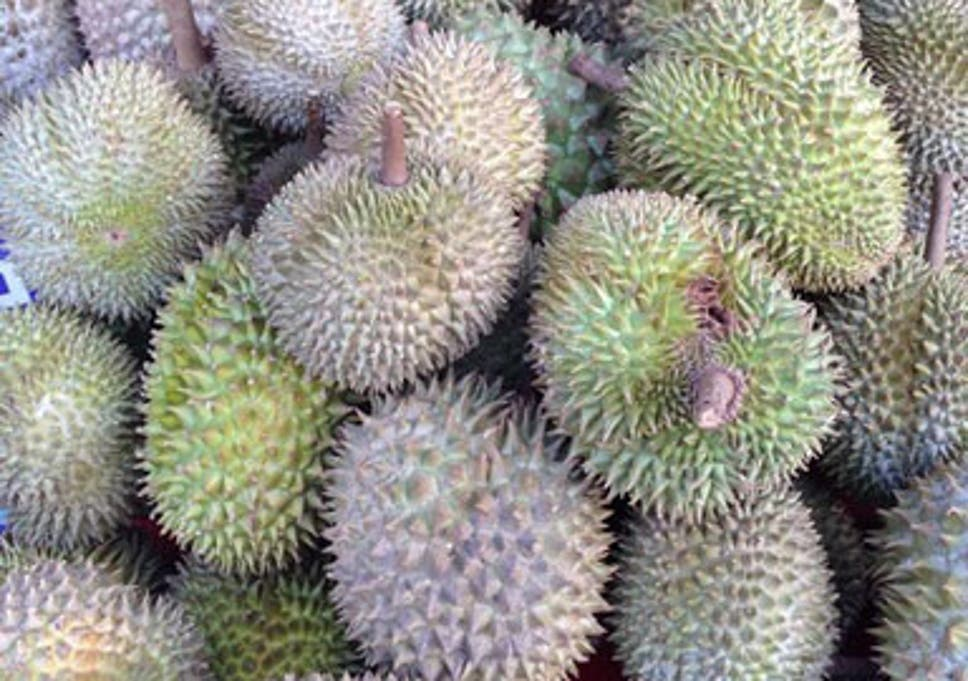 world s smelliest durian fruit goes on sale in uk for first time