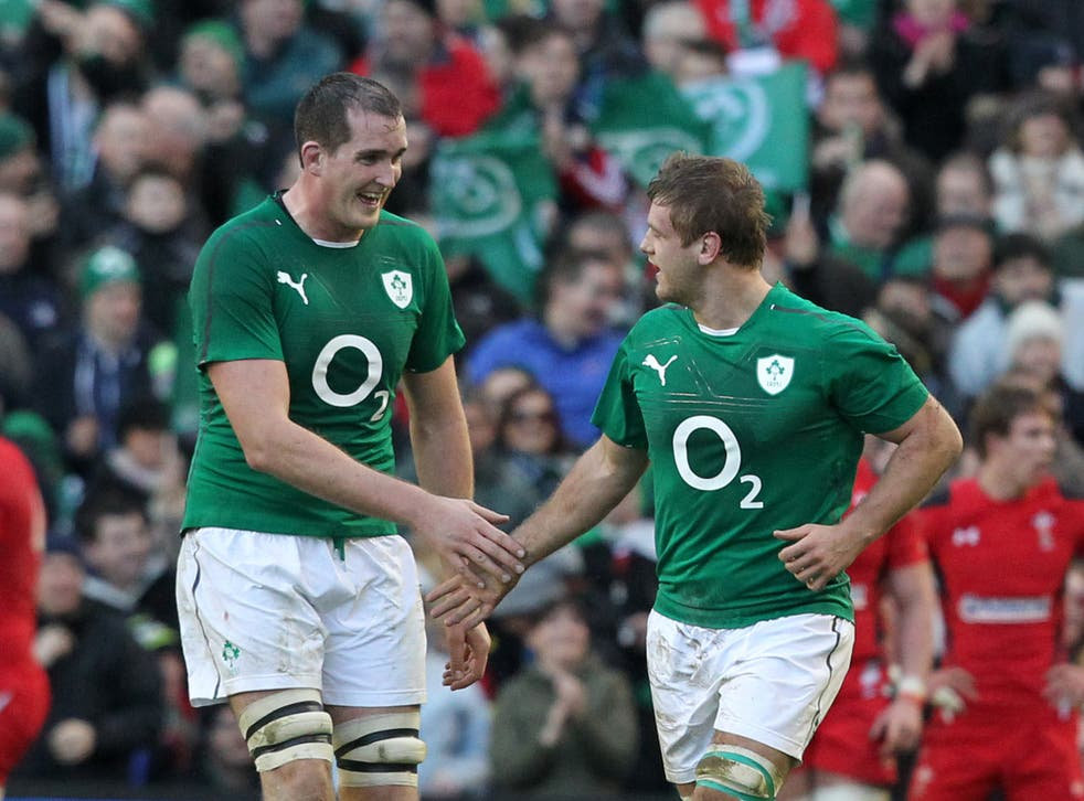 Ireland players celebrate after their victory over Wales
