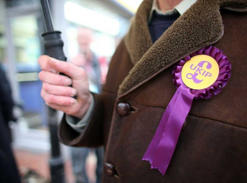A UKIP member wearing the party's rosette