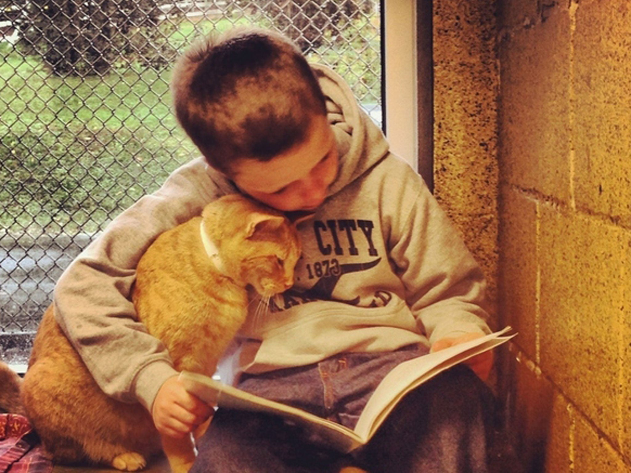Children read out loud to cats in adorable pictures | The ...