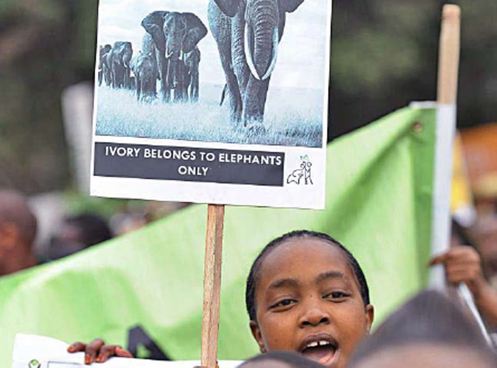 Wildlife conservationists take to the streets of Nairobi as part of an awareness campaign dubbed 'Ivory Belongs to Elephants'