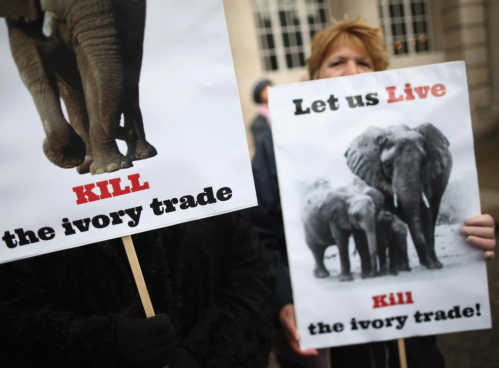 Campaigners protest against the illegal trade in wildlife outside the conference venue, Lancaster House in London, yesterday