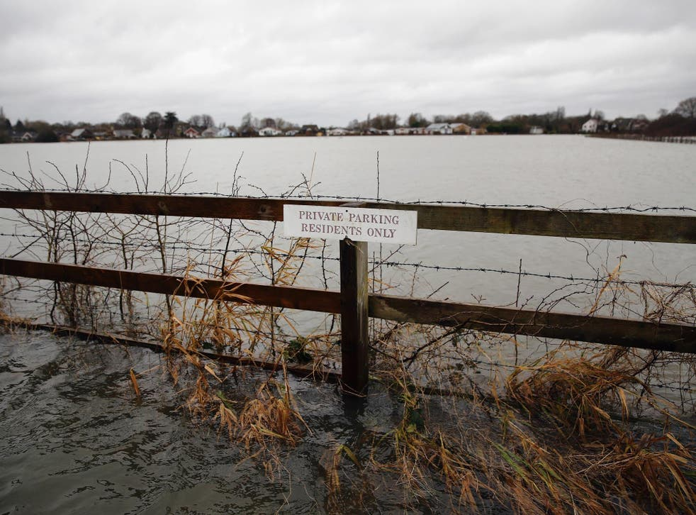 The floods are having a damaging effect on ecosystems