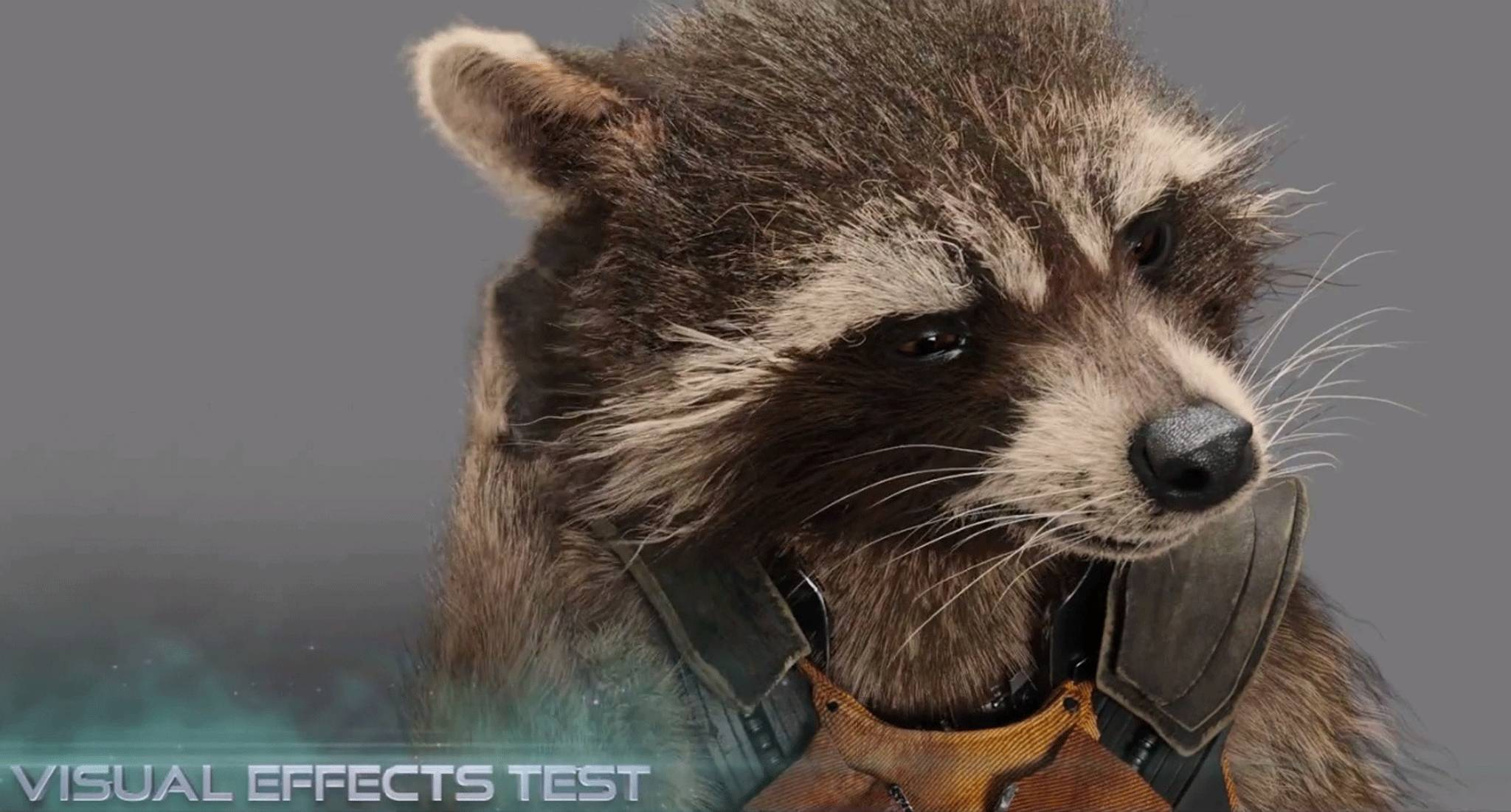 Meet Rocket Raccoon Bradley Coopers Guardians Of The Galaxy Character Speaks In Featurette