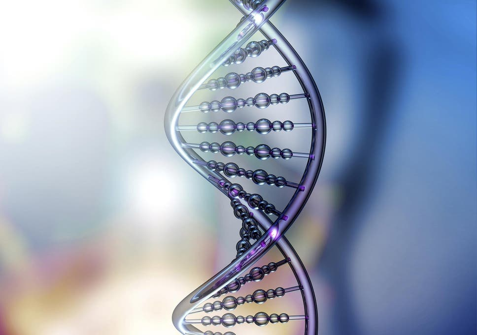 Gene editing could bring an end to all inherited disease and