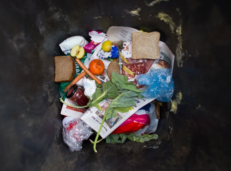 Millions of tonnes of food is wasted in the UK alone each year