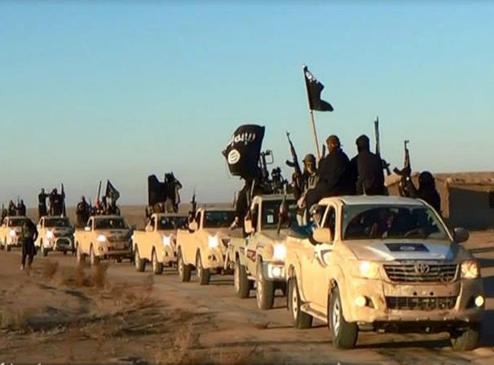 A convoy of vehicles carrying Isis militants in Fallujah