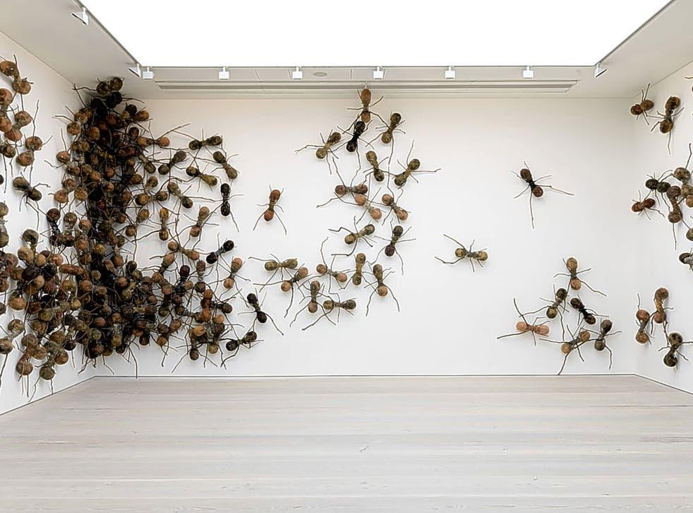 Eye on the crawl:  'Casa Tomada' (2013) by Rafael Gómezbarros