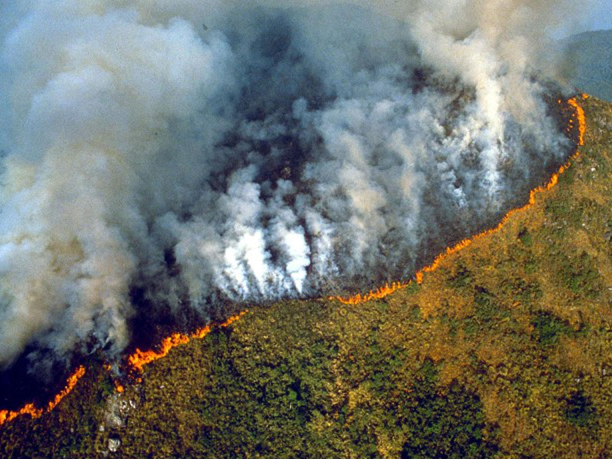 Fires could turn Amazon rainforest into a desert as human activity ...